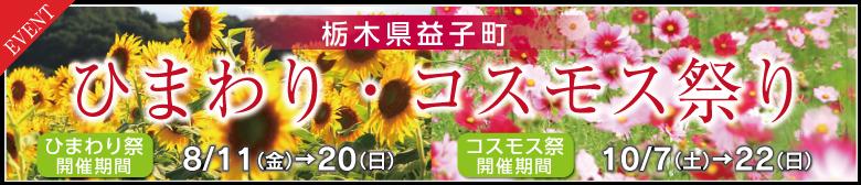 栃木県益子町ひまわり・コスモス祭り