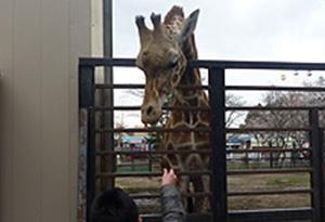 宇都宮動物公園
